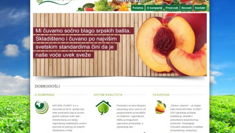 WordPress web sajt Novi Sad